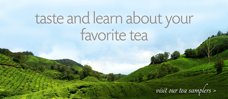 Taste and learn about your favorite tea - Visit our learning library